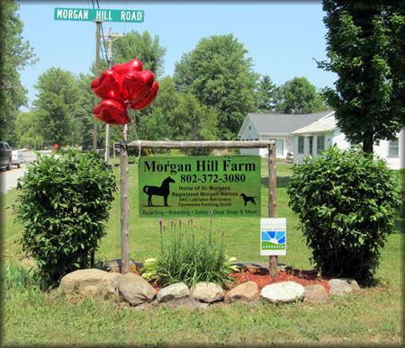 Morgans hill